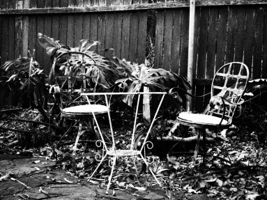 Chairs in the garden, wollongong, airbnb, black and white, dreamcatcher.tv